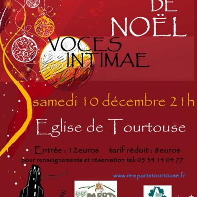 Afiiche2tourtouse flyer